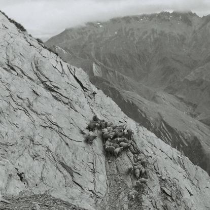 Elements - Precipice-2 (Dave Osmers)-web-sq